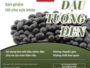 Đậu tương ĐEN No-GMO, sản phẩm của các nhà khoa học Viện Di truyền Nông nghiệp