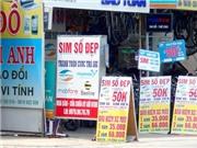 Sim tài khoản cao dùng để gửi sms: Vietnamobile 12k tk 20k. 22k tk 40k